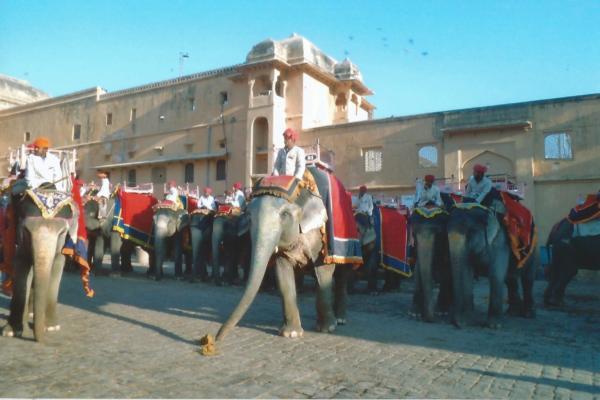 JAIPUR-odlazak na slonovima do rađastanske palače Fort Amber