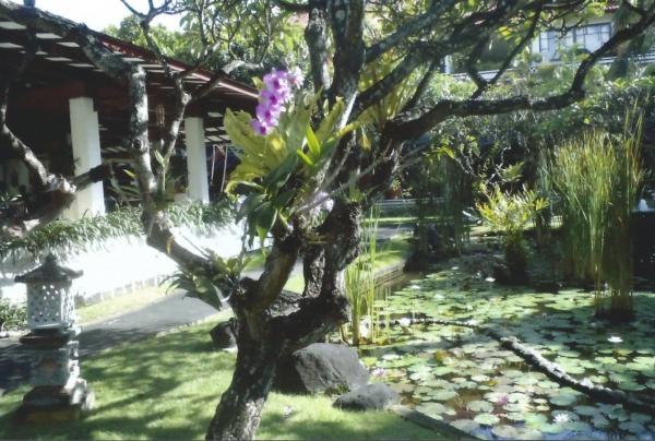 Benoa-vrtovi uz hotel Melia Benoa