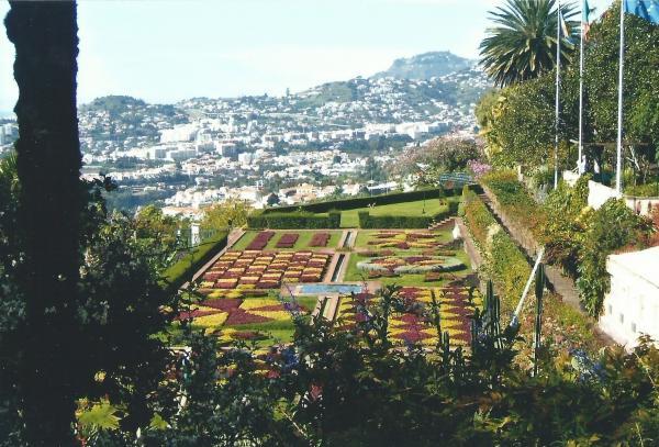 Državni botanički vrt s panoramom Funschala u pozadini