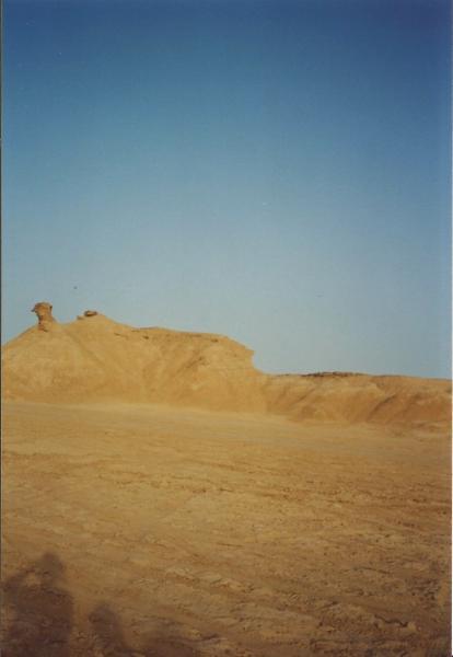 Sahara - dina u obliku deve
