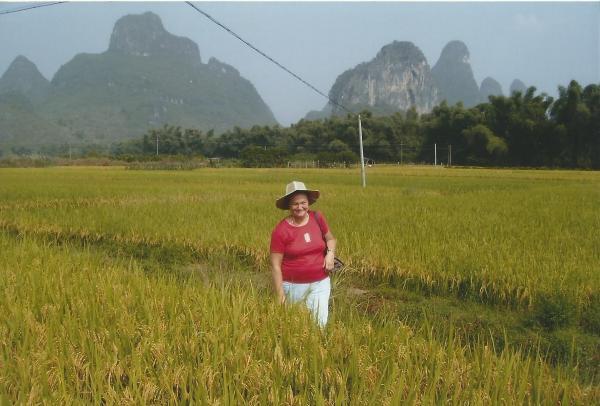 Jangshu-rižino polje