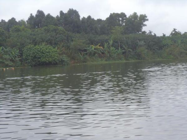 Mirisna rijeka.