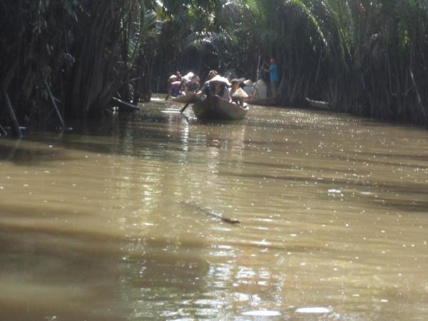 Plovidba rukavcima Mekonga.